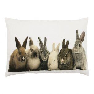 Kanevas kissen kaninchen 35x50cm