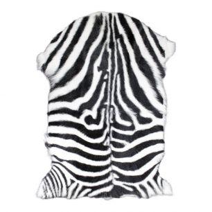 Fell ziege zebra